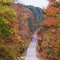 Fall foliage on the parkway at the Rock Spring entrance.