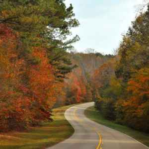 northeast Mississippi: Fall foliage at milepost 280.
