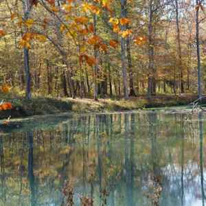 northwest Alabama: Fall foliage at the beaver pond.