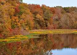 Beautiful fall foliage at River Bend.