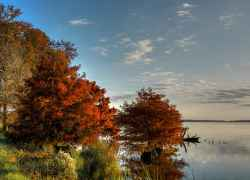 Fall foliage view of the Ross Barnett Reservoir.