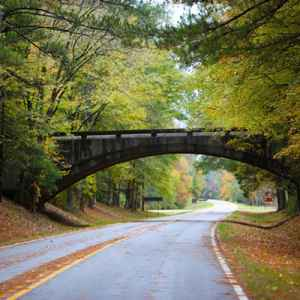 Kosciusko area: Picture of the bridge at Kosciusko, MS going over the Natchez Trace Parkway.