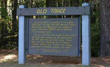 Old Trace site at milepost 221 in Mississippi.