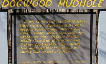 Interpretive sign at Dogwood Mudhole.