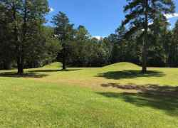 Mississippi - Bynum Mounds