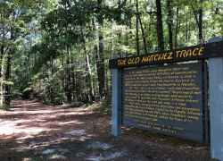 Mississippi - a section of the Old Trace at milepost 221.4