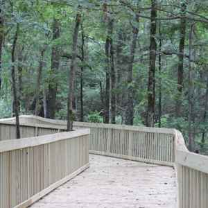 Boardwalk trail connecting the craft center with the Brashear's Stand site on the Natchez Trace Parkway.