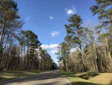 Parkway thru the Tombigbee National Forest.