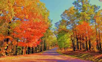 Mississippi - Fall Foliage at Jeff Busby Park