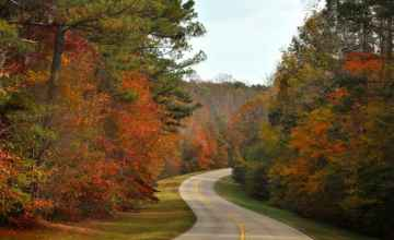 Mississippi - Fall foliage at milepost 280.