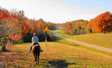Tennessee - Horseback ride near milepost 418 on the Natchez Trace National Scenic Trail.