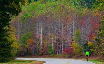 Tennessee - Fall foliage at milepost 431.