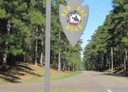 Red Dog Road - Natchez Trace Parkway