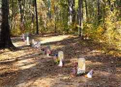 Site of 13 unknown Confederate gravesites. Natchez Trace Parkway