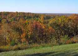 Swan View Overlook - Natchez Trace Parkway