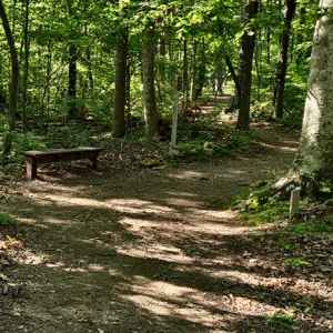 Timberland Park Hiking Trails - Franklin, TN / Williamson County