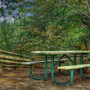 Picnic table at Twentymile Bottom Overlook - Natchez Trace Parkway